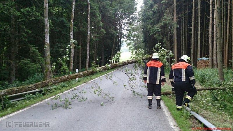 Technische Hilfeleistung vom 29.06.2013  |  (C) Feuerwehr Sandbach / Bachhuber (2013)